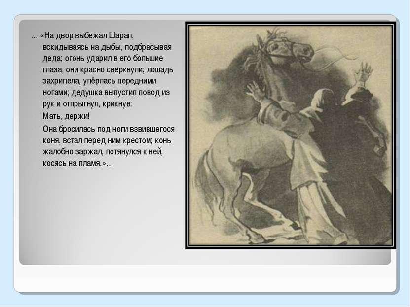 … «На двор выбежал Шарап, вскидываясь на дыбы, подбрасывая деда; огонь ударил...