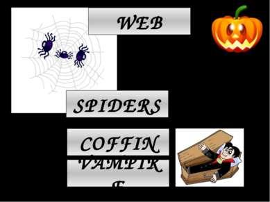 COFFIN VAMPIRE SPIDERS WEB