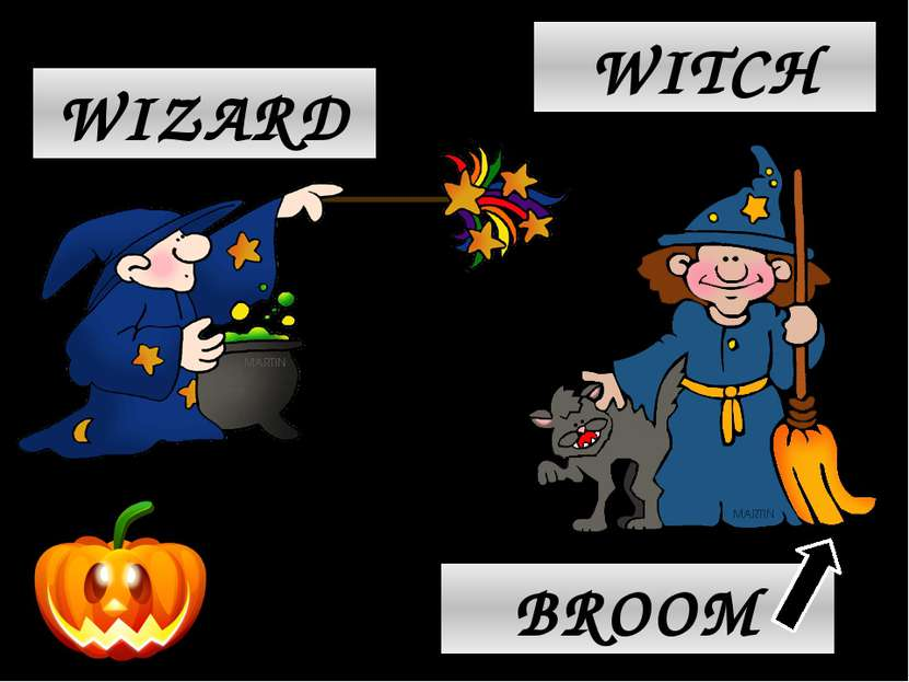 WIZARD WITCH BROOM