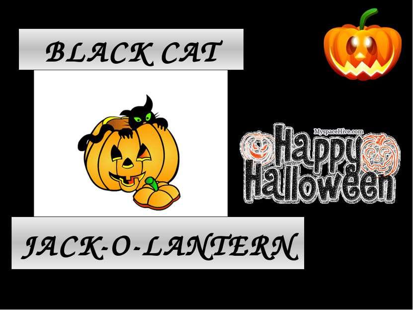 JACK-O-LANTERN BLACK CAT