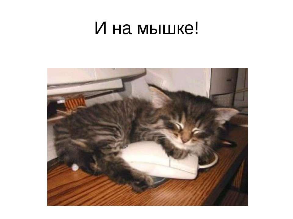 И на мышке!