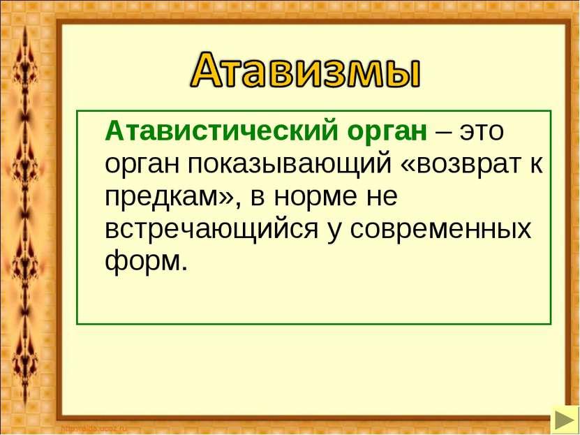 Атавистический орган – это орган показывающий «возврат к предкам», в норме не...