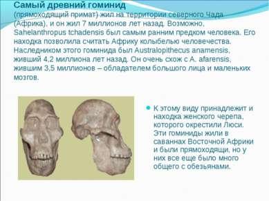 Самый древний гоминид (прямоходящий примат) жил на территории северного Чада ...
