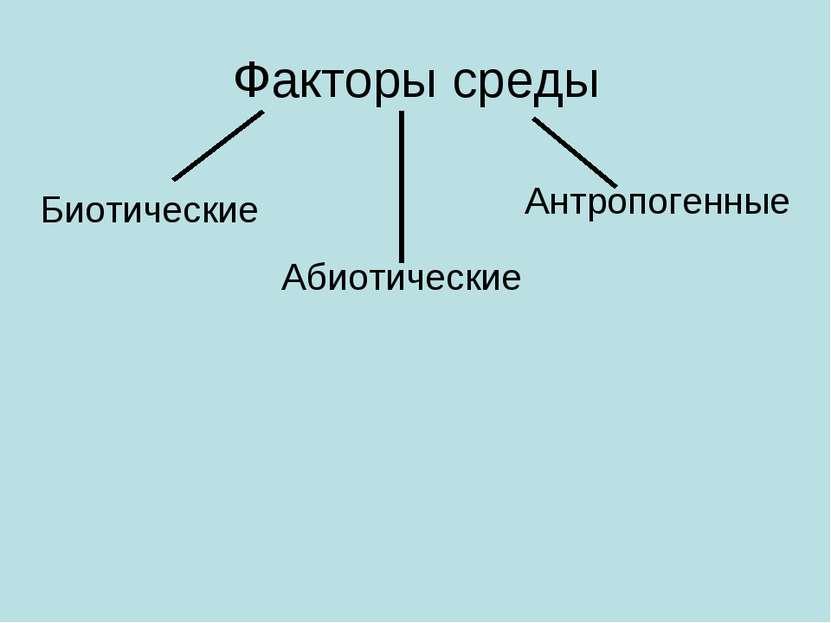 Факторы среды Биотические Абиотические Антропогенные