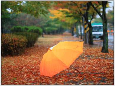 Если дождик начинается, Как цветок, он распускается И со мною в переулке Засп...