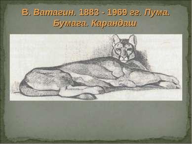 В. Ватагин. 1883 - 1969 гг. Пума. Бумага. Карандаш