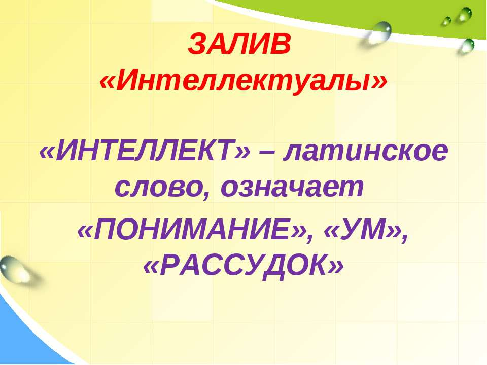 ЗАЛИВ «Интеллектуалы» «ИНТЕЛЛЕКТ» – латинское слово, означает «ПОНИМАНИЕ», «У...