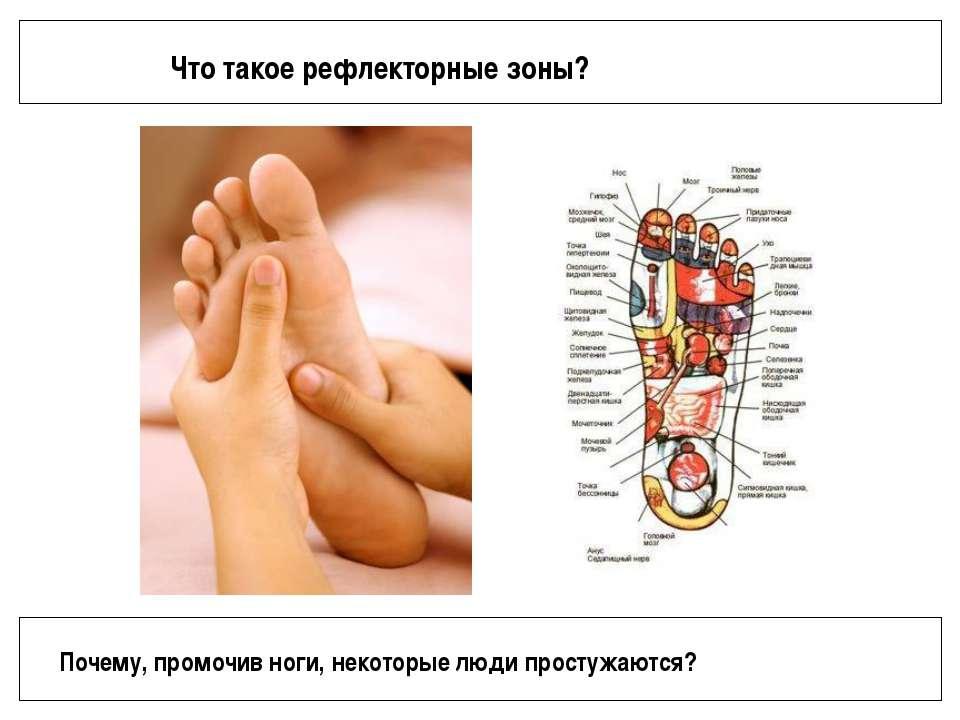 Что такое рефлекторные зоны? Почему, промочив ноги, некоторые люди простужаются?
