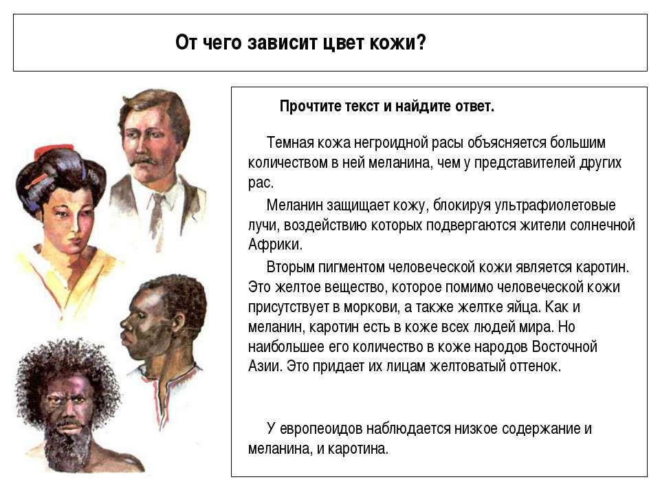 От чего зависит цвет кожи? Прочтите текст и найдите ответ. Темная кожа негрои...