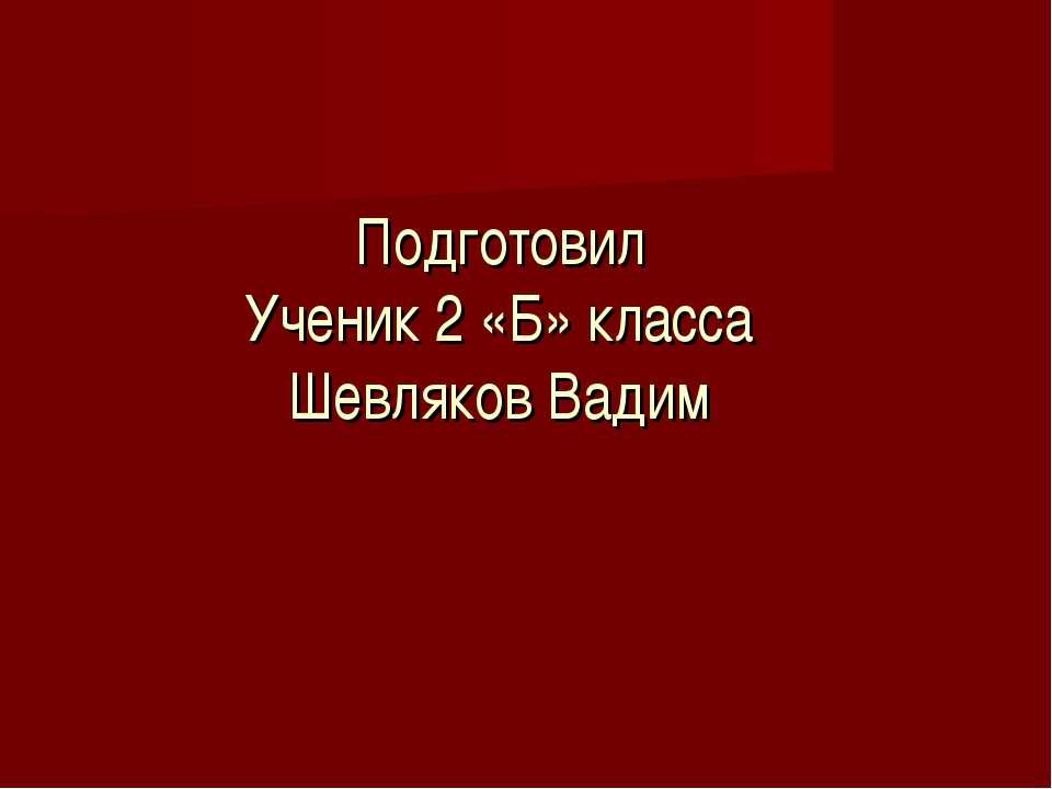 Подготовил Ученик 2 «Б» класса Шевляков Вадим