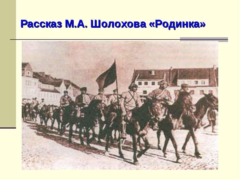 Рассказ М.А. Шолохова «Родинка»