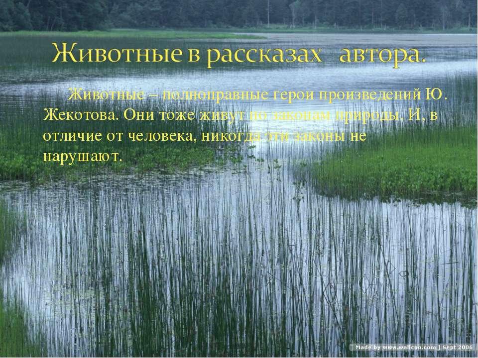 Животные – полноправные герои произведений Ю. Жекотова. Они тоже живут по зак...