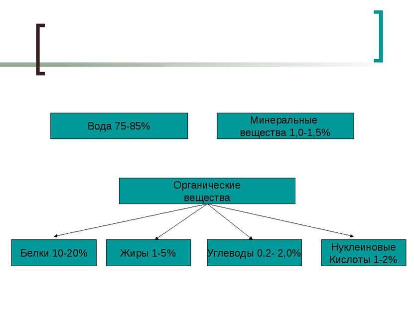 Вода 75-85% Минеральные вещества 1,0-1,5% Белки 10-20% Органические вещества ...