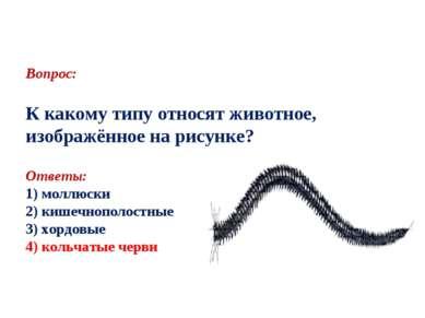 Вопрос: К какому типу относят животное, изображённое на рисунке? Ответы: 1) м...