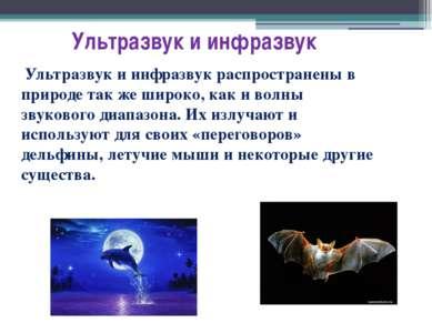 Ультразвук и инфразвук Ультразвук и инфразвук распространены в природе так же...