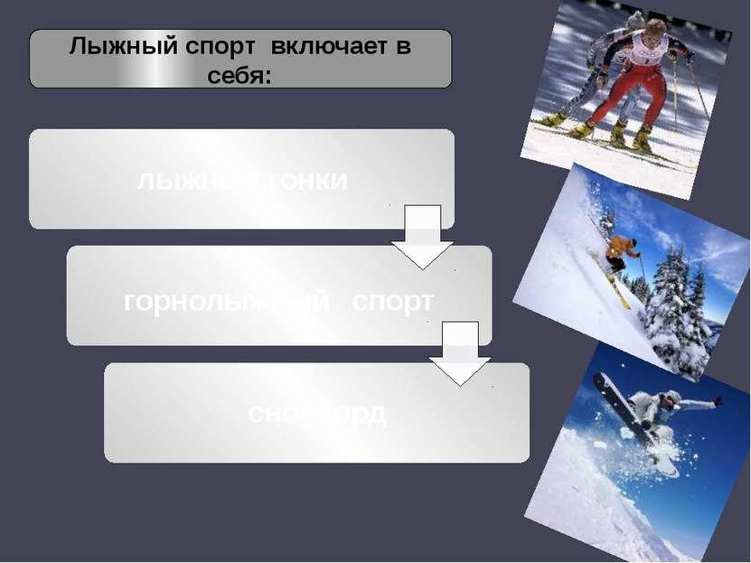 Лыжный спорт включает в себя: