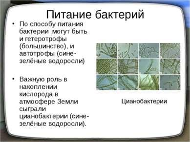 Питание бактерий По способу питания бактерии могут быть и гетеротрофы (больши...