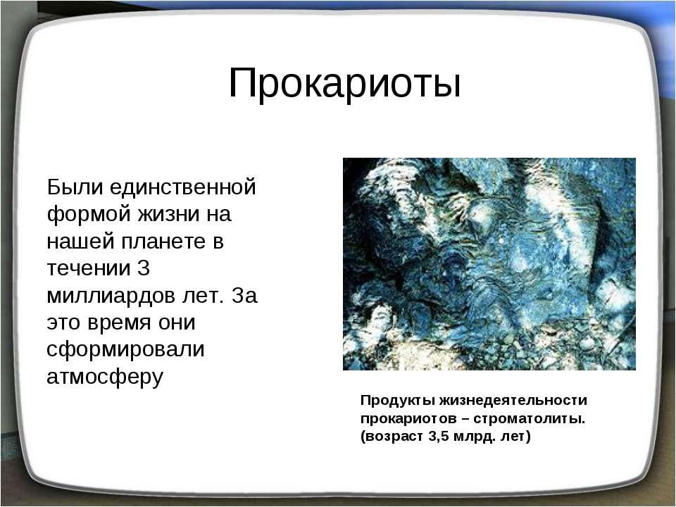 Прокариоты Были единственной формой жизни на нашей планете в течении 3 миллиа...