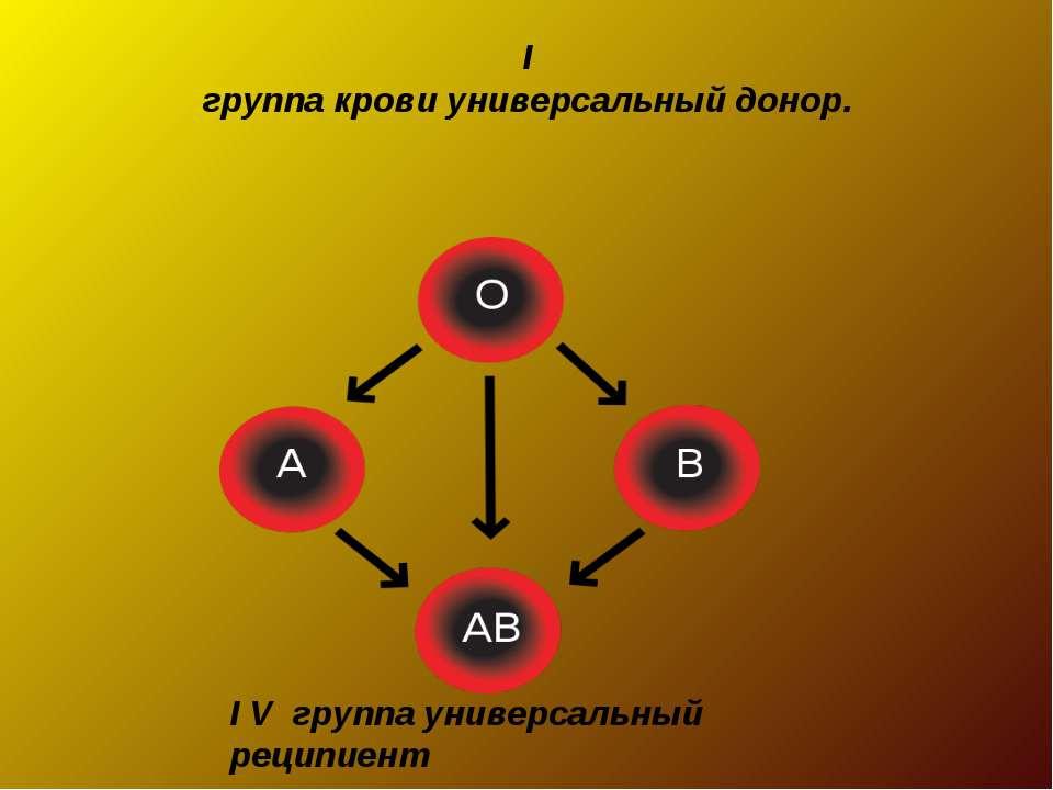 I группа крови универсальный донор. I V группа универсальный реципиент