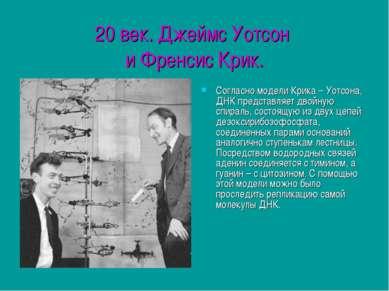 20 век. Джеймс Уотсон и Френсис Крик. Согласно модели Крика – Уотсона, ДНК пр...