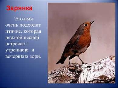 Зарянка Это имя очень подходит птичке, которая нежной песней встречает утренн...
