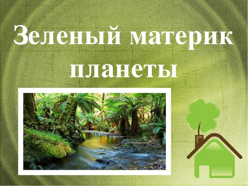Зеленый материк планеты