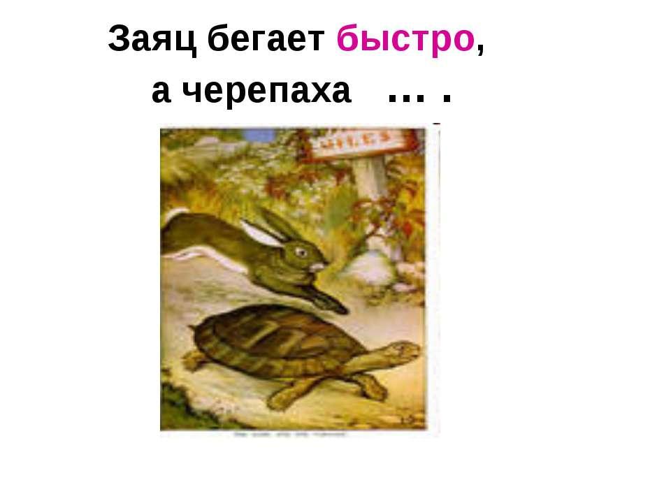 Заяц бегает быстро, а черепаха … .