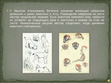 У Василия Алексеевича Ватагина огромная коллекция набросков домашних и диких ...