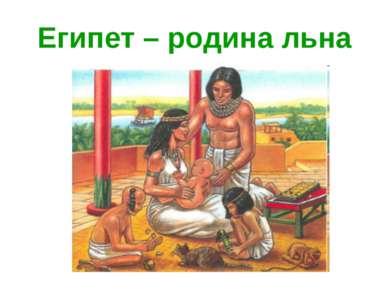 Египет – родина льна