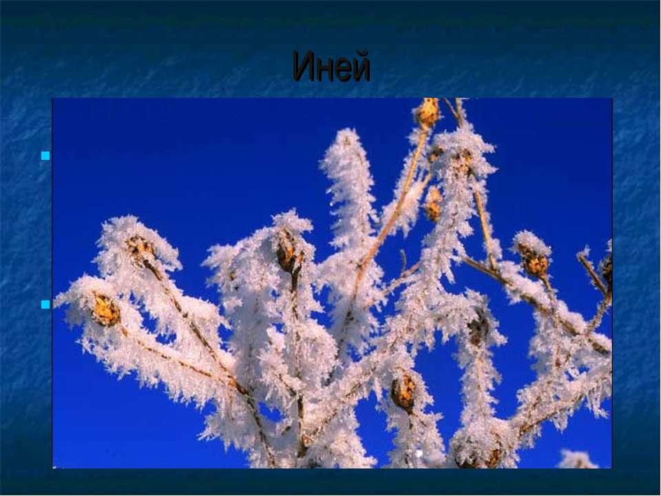 Иней Иней образуется из маленьких кристалликов замёрзшей воды. Когда воздух о...