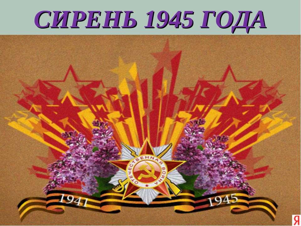 СИРЕНЬ 1945 ГОДА