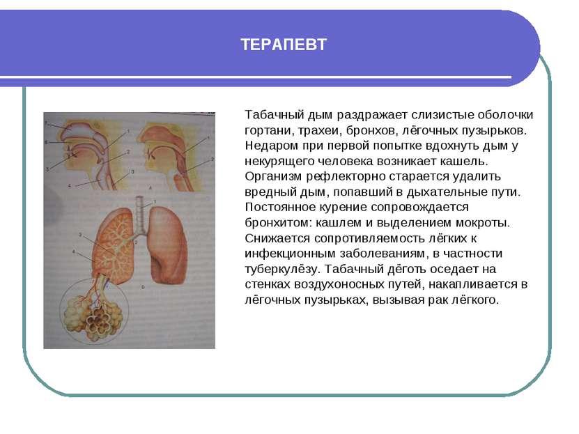 ТЕРАПЕВТ Табачный дым раздражает слизистые оболочки гортани, трахеи, бронхов,...
