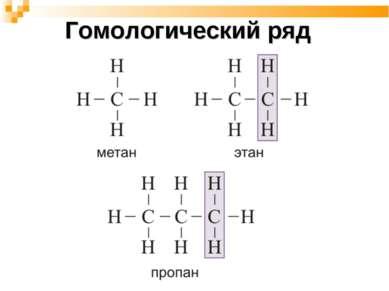 Гомологический ряд