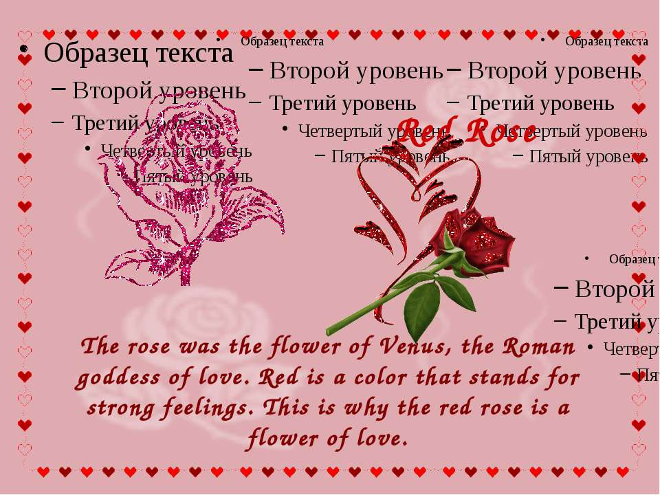 The rose was the flower of Venus, the Roman goddess of love. Red is a color t...