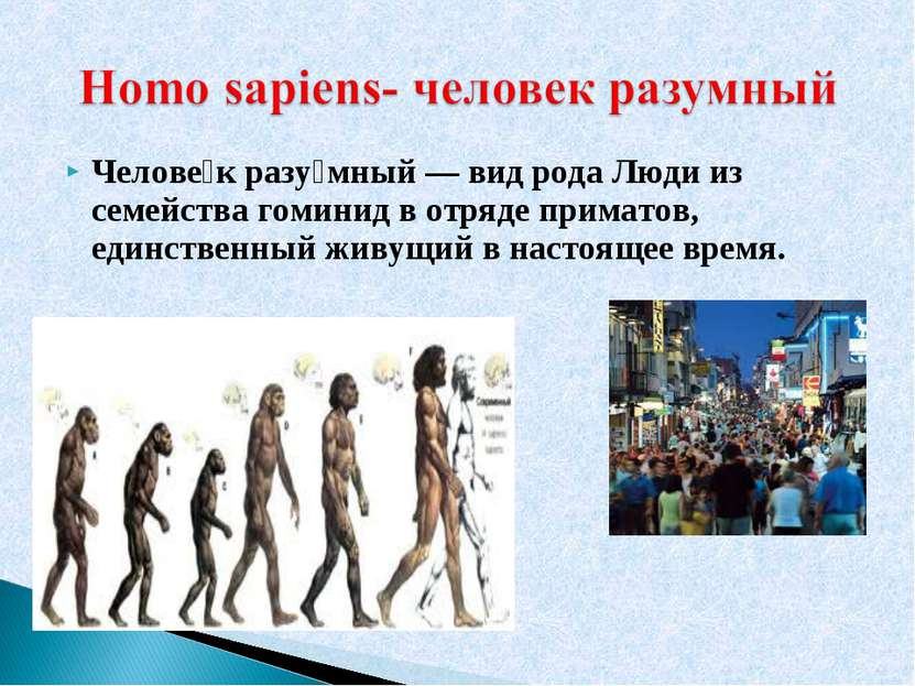 Челове к разу мный — вид рода Люди из семейства гоминид в отряде приматов, ед...