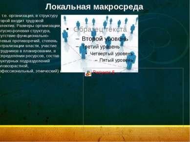 Локальная макросреда т.е. организация, в структуру которой входит трудовой к...