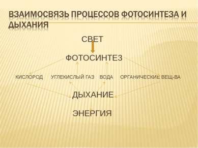 СВЕТ  ФОТОСИНТЕЗ КИСЛОРОД УГЛЕКИСЛЫЙ ГАЗ ВОДА ОРГАНИЧЕСКИЕ ВЕЩ-ВА ДЫХАНИЕ ЭН...