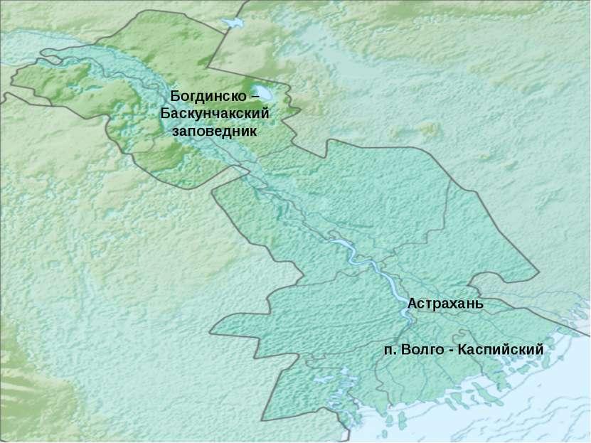 Богдинско – Баскунчакский заповедник Астрахань п. Волго - Каспийский