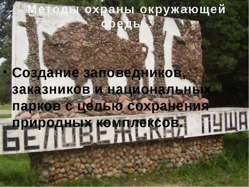 Создание заповедников, заказников и национальных парков с целью сохранения пр...
