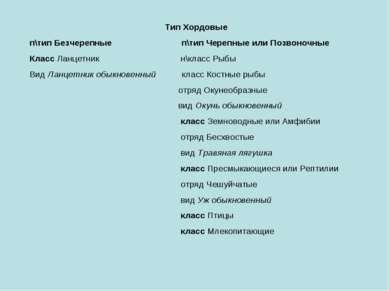 Тип Хордовые п\тип Безчерепные п\тип Черепные или Позвоночные Класс Ланцетник...
