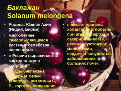 Баклажан Solanum melongena Родина: Южная Азия (Индия, Бирма) многолетнее само...