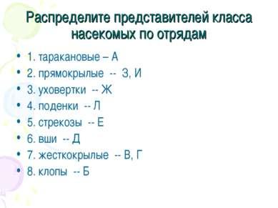 Распределите представителей класса насекомых по отрядам 1. таракановые – А 2....