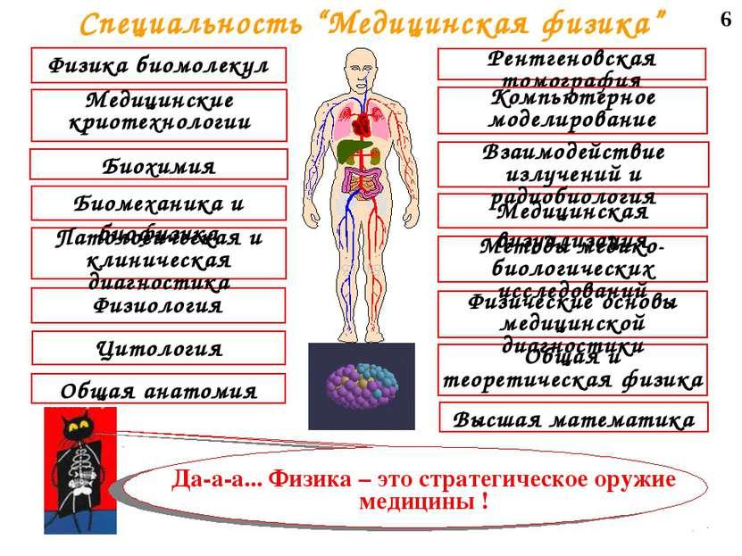 """6 Специальность """"Медицинская физика"""""""
