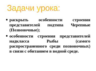 раскрыть особенности строения представителей подтипа Черепные (Позвоночные); ...
