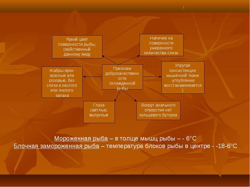 Признаки доброкачественности охлажденной рыбы Яркий цвет поверхности рыбы, св...