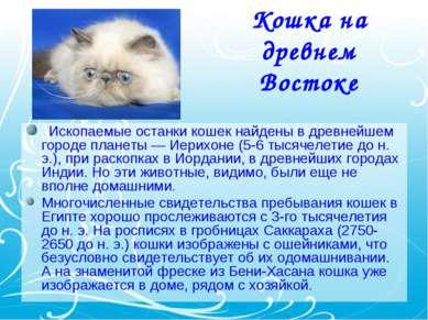 Кошка на древнем Востоке Ископаемые останки кошек найдены в древнейшем горо...