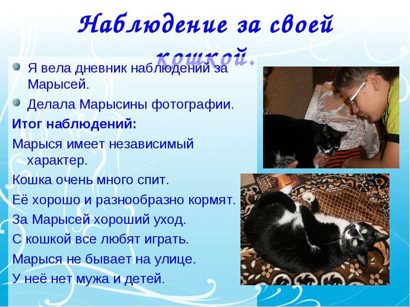 Наблюдение за своей кошкой. Я вела дневник наблюдений за Марысей. Делала Мары...