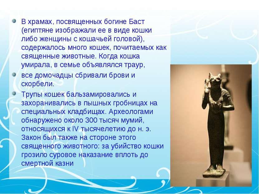 В храмах, посвященных богине Баст (египтяне изображали ее в виде кошки либо ж...