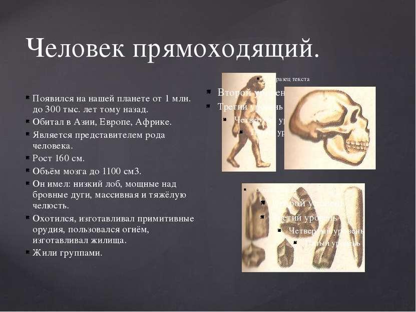 Человек прямоходящий. Появился на нашей планете от 1 млн. до 300 тыс. лет том...