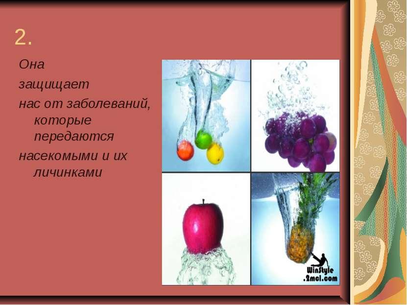 2. Она защищает нас от заболеваний, которые передаются насекомыми и их личинками